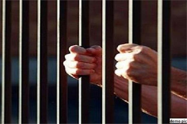 2 to 3 years imprisonment including director