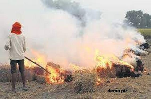 order issued for ban on burning crop residues