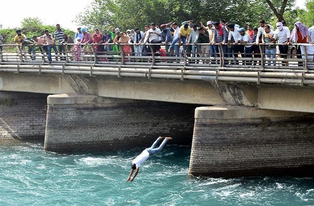 teachers jumped into bhakra canal