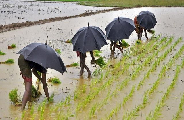 india meteorological department monsoon of the year