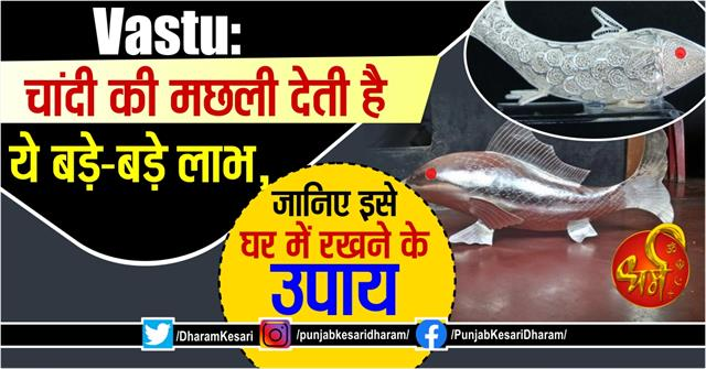 vastu tups about silver fish and super fish in hindi
