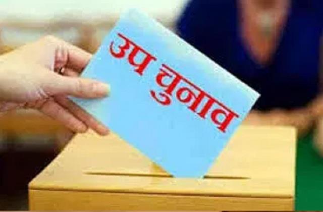 campaigning for salt vis by election halts