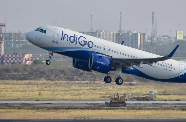indigo launches delivery service for passengers