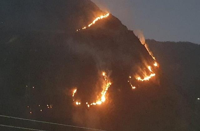 another person burnt to death in forest fire