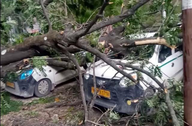 trees fell on taxis people escaped and saved lives