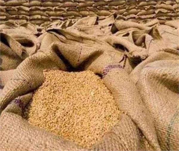 wheat purchase
