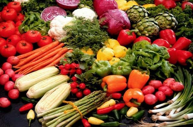 effect of vegetarian diet on human body