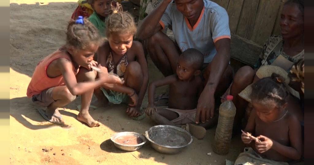 इस देश में कोरोना के साथ भुखमरी की मार, घास और टिड्डियां खाने को मजबूर लोग  - madagascar edges toward famine un food agency appeals for assistance