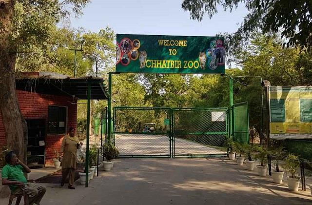 punjab zoo closed till 31st may
