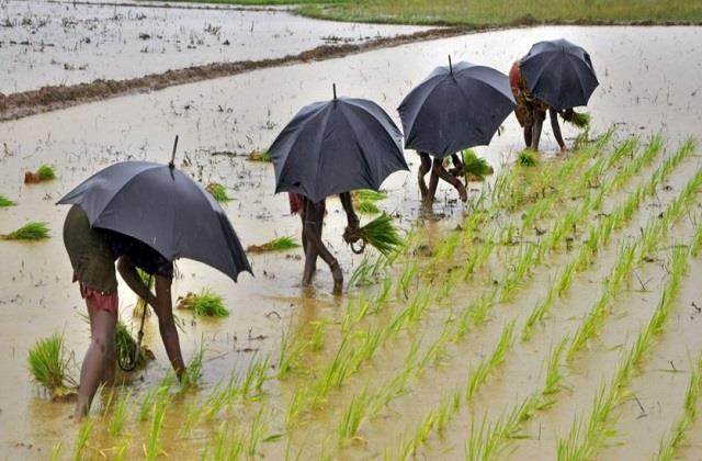 record agricultural production expected from good monsoon
