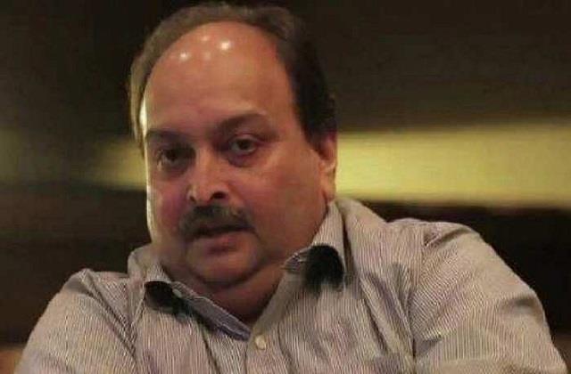 efforts to bring mehul choksi to india intensified