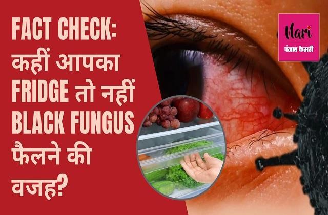फ्रिज-एसी साफ तो Black Fungus का नहीं कोई खतरा, जानिए इस वायरल मैसेज का सच