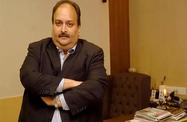 brother bribes dominica s opposition leader to suppress mehul choksi s case