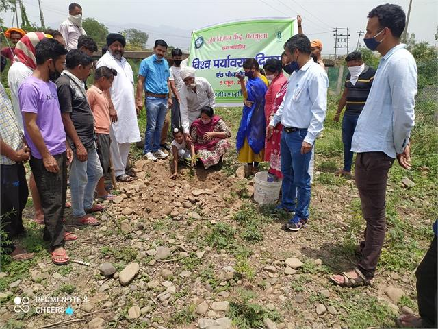 plant trees campaign launched by krishi vigyan kendra