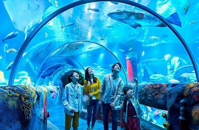 यहां है दुनिया के 5 सबसे बड़े और खूबसूरत Aquariums