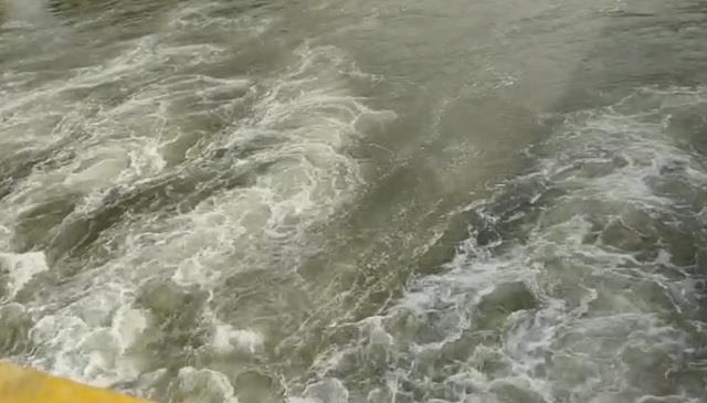 woman jumps in yamuna canal along with two children