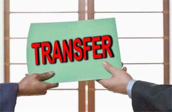 this sho of jalandhar transferred to