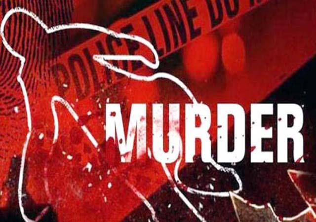 son in law murdered mother in law