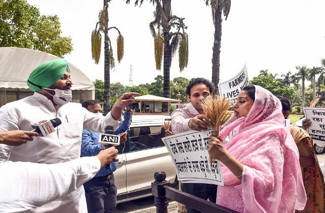 harsimrat and bittu clash in parliament premises