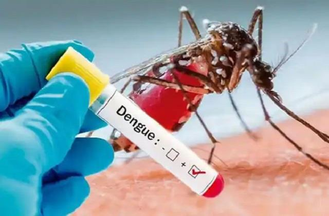 dengue outbreak continues in firozabad 55 people have