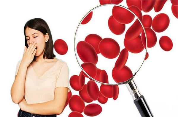 Iron Deficiency Anemia: खून कम है तो खाएं ये 5 Superfoods, दवाइयों की नहीं पड़ेगी जरूरत