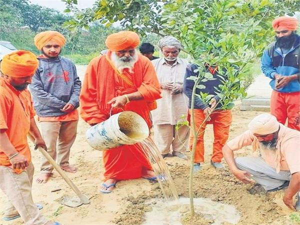 8 lakh saplings will be planted in the rainy season