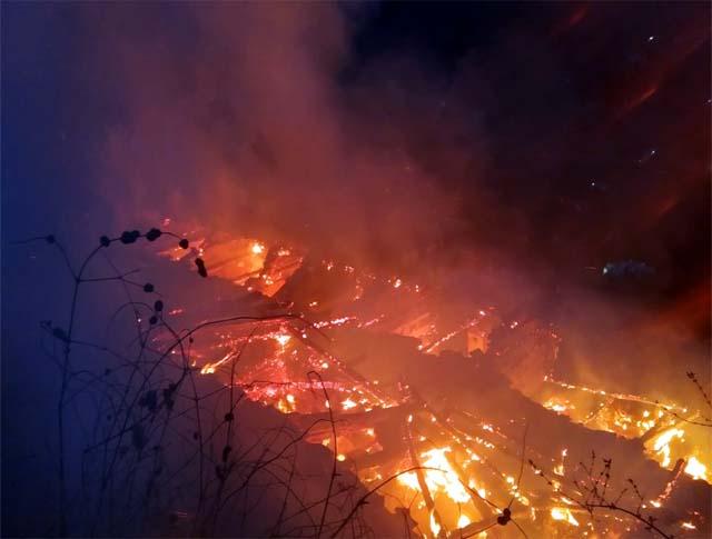 PunjabKesari, Fire in Shimla