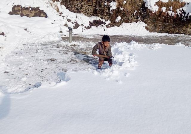 PunjabKesari, Little Boy Image